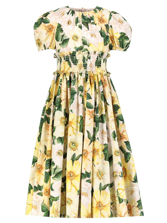 Dolce and Gabbana Dresses,dolce and gabbana dress,dolce and gabbana dress,